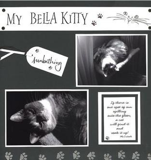 My Bella Kitty  Color Challenge #3