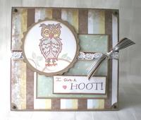 I Give A Hoot!