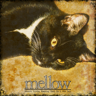 Mellow {CT Reveal}