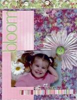Bloom **Basic Grey Euphoria CT Reveal**