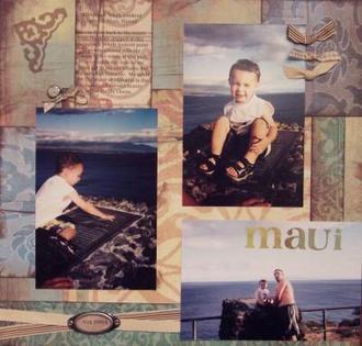 Whale Lookout-Maui