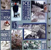 Ice Storm 2004