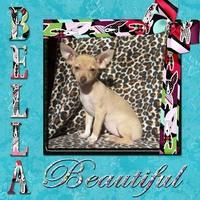 Bella (Nov digi swap 1)