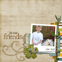 fur-ever friends {CT photo swap reveal}