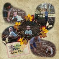 Aleene First Leaf Pile