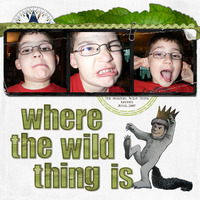 Where the Wild Thing Is