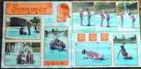 Summer fun 2004