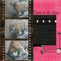 Tigers-Pink challenge