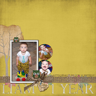 Liam - 1 year {CT Kreations by Kami Reveal}