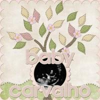 Baby Carvalho