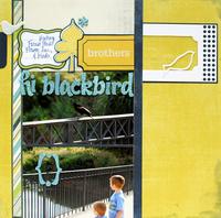 hi blackbird