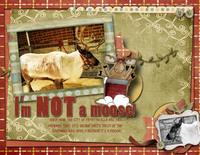 I am NOT a moose!