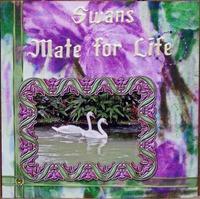 Swans Hybrid