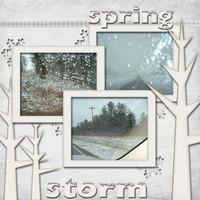 Feb Digi CT Reveal Chlg - Spring Storm