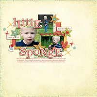 * Little Sponge *