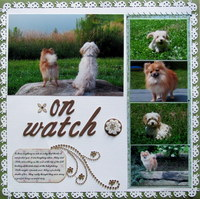 On Watch
