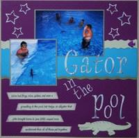 Gator in the Pool