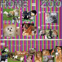 Home=Zoo