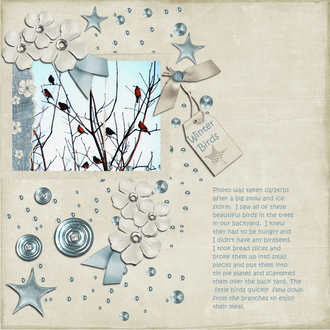 Winter Birds - Feb Digi CT Reveal Challenge