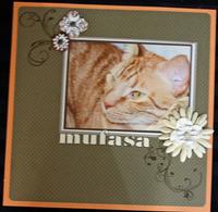 Mufasa 2011