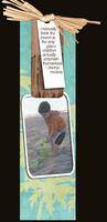 FS#7 - beach bookmark