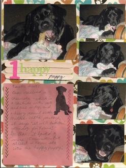 1 happy puppy