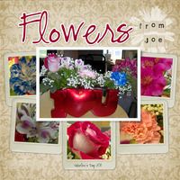Flowers From Joe