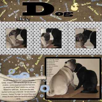 lucky DOG--letter D of abc 2011