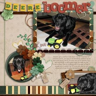 Deere Boomer