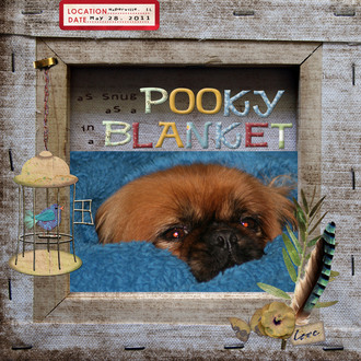 As Snug As A Pooky In A Blanket