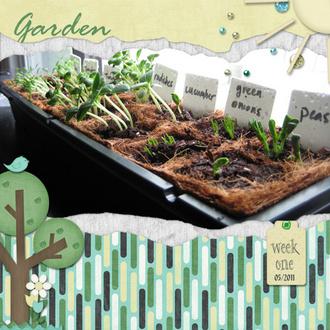 Garden Week One
