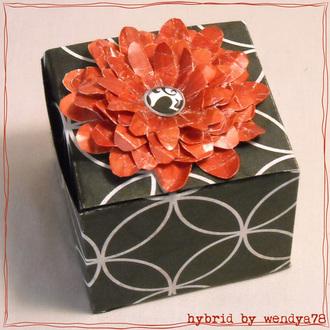 Spice of Life Box