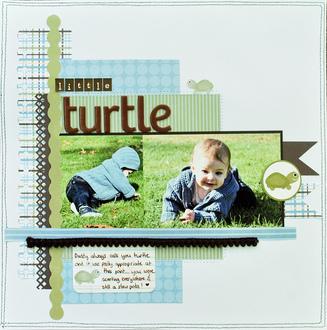 *3 Bugs* Little Turtle