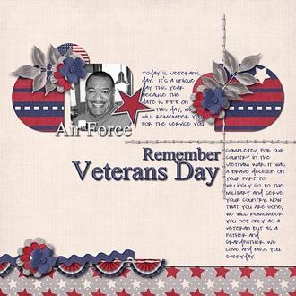 Remember Veteran's Day