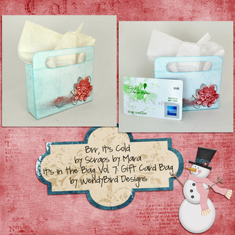 Brr, It's Cold Gift Card Bag