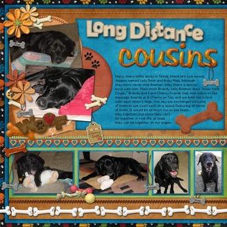 Long Distance Cousins