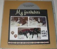 My Furbabies