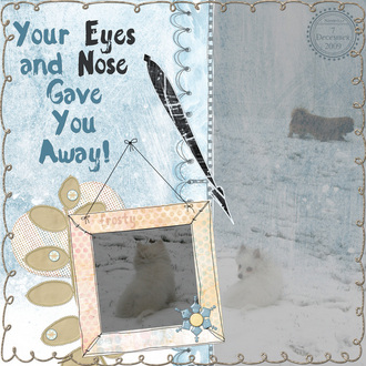 Your Eyes and Nose