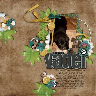 Meet Vader {digi reveal 02/23}