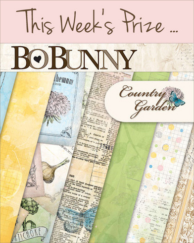 craft facebook giveaway bo bunny