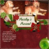 Paisley's Present