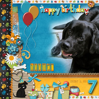 Happy Birthday Boomer