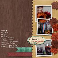 My Autumn Comfort