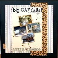 big cat falls