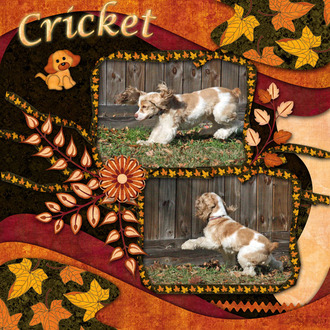 Cricket Chasing Leaves 2