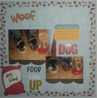 Dog Food Line Up