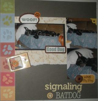 Signaling Batdog