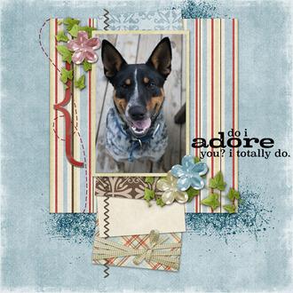 Koda-Adore you
