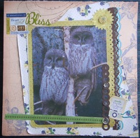 Owls = bliss