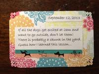 LSNED September 12
